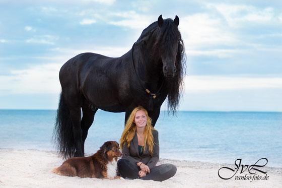 Pferd im Raps reiten Rasmus und Hanna Greve