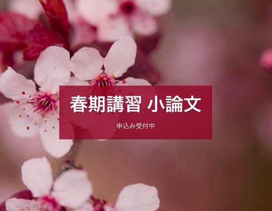 AO入試対策の春期講習