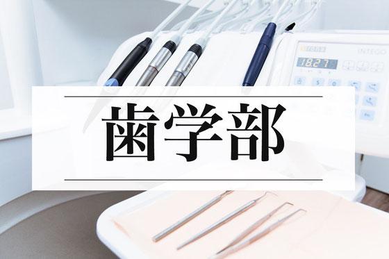 歯学部受験小論文塾