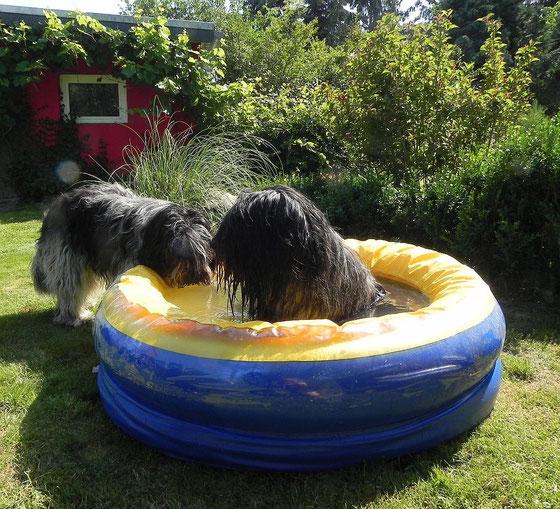 Oskar's Poolposition.....