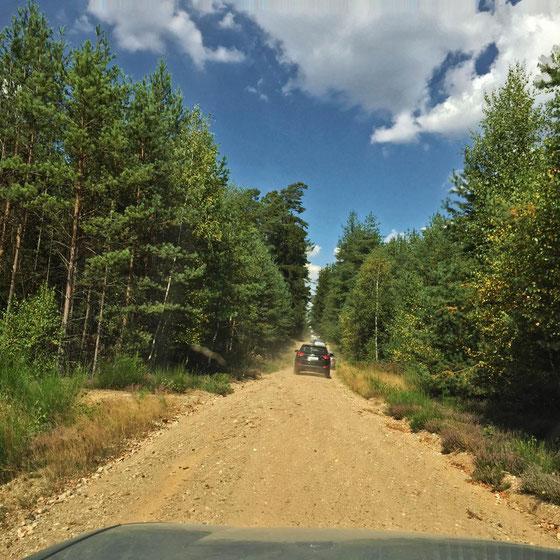Eine der Forstautobahnen.