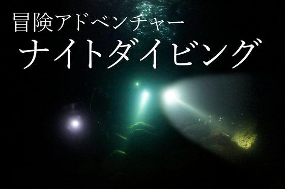 天草ナイトダイビング イメージ写真