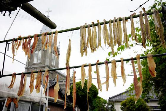 カトリック教会と干物