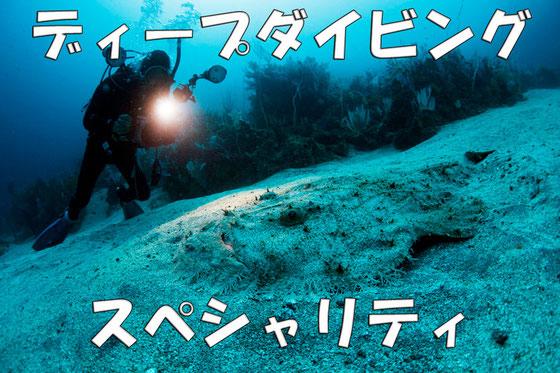 深海の生物に会いに行こう!ディープダイビングスペシャリティ