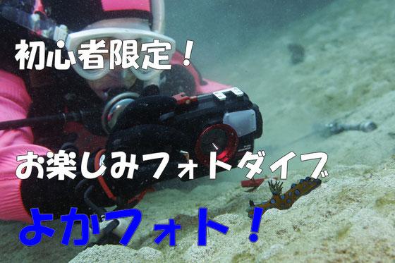 初心者ダイバー応援企画 よかフォト!2ダイブフルレンタルカメラ付きでなんと15,000円!