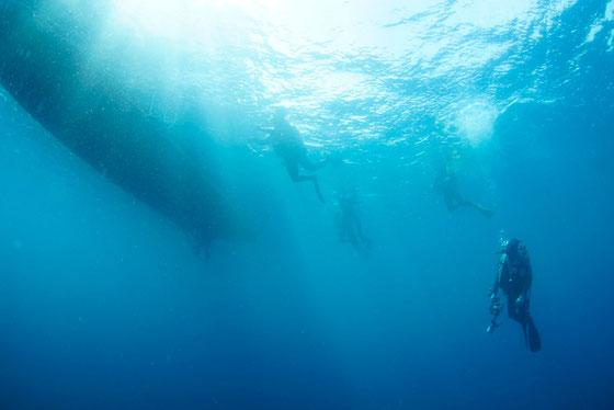 アドバンスオープンウォータダイバーコース ボートダイビング
