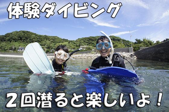 熊本天草体験ダイビングイメージ写真 料金案内