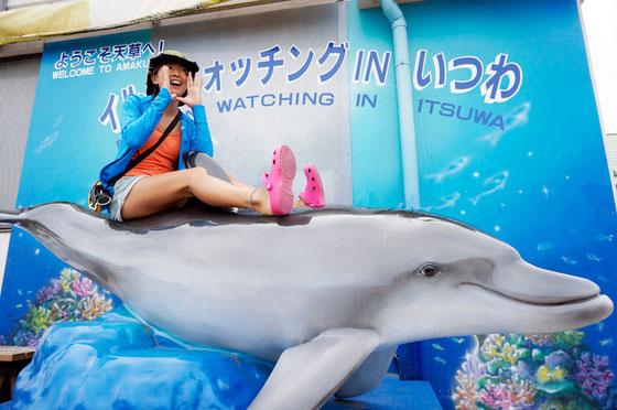 天草の観光情報写真 イルカ