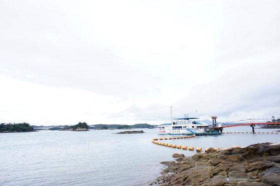 天草海中水族館 シードーナツ写真