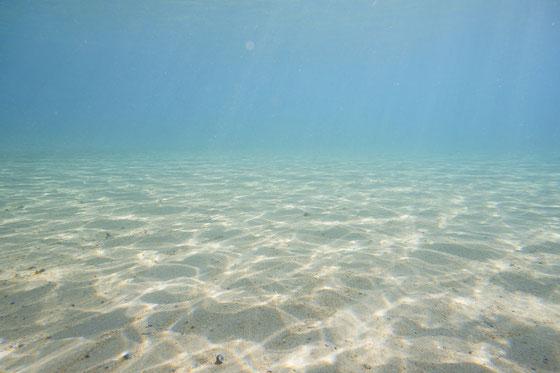 水中はこんな感じ。何も居ない海水浴場の砂地 水深1m