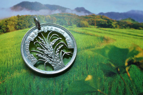 Münzsagewerk Katrin Thull | Burma - Reis