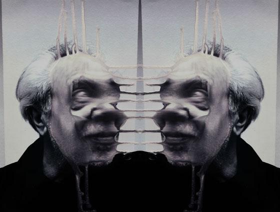 """Diptychon diffluence 1"", Fotografie, Lack, Maße variabel, 2017"