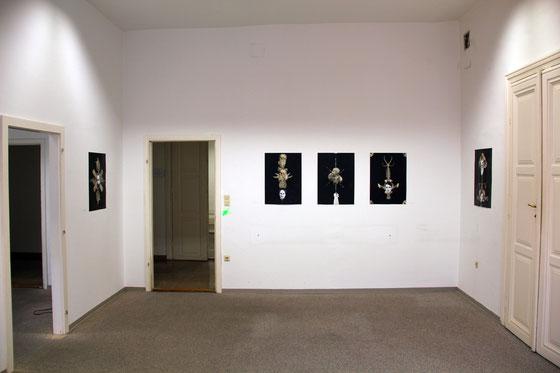 Parallel Vienna, 2015, Wien