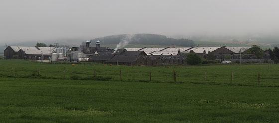 Inchgower Distillery - Foto Ralf Zindel