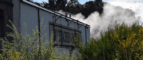Ardmore Distillery von William Teachers errichtet