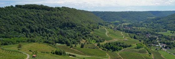 Die Brennerei Revermont im Ort Nevy-sur-Seille