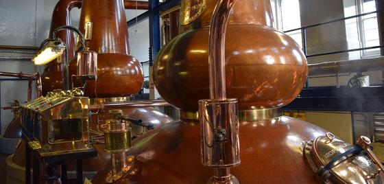 Deanston Distillery Stills - Foto Ralf Zindel