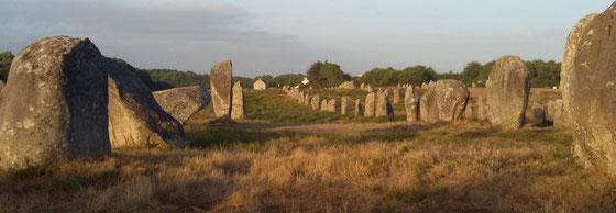 Grabreihen von Carnac (Südl. Bretagne) - Foto Zindel