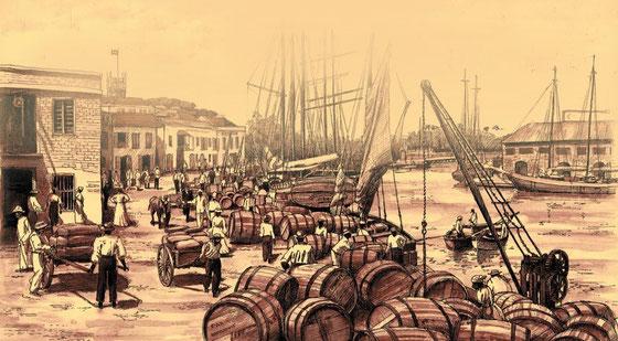 Mount Gay Rum - Bildquelle Rèmy Cointreau