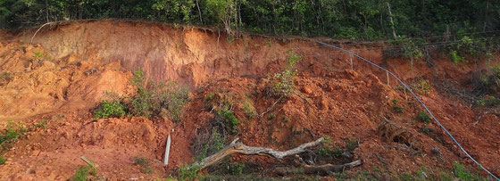 Terra Rossa Böden sind typisch für die Tropen und Subtropen