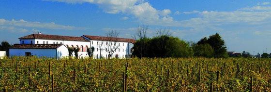 Villa Rosina Ort der Destilleria Bottego