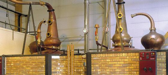 Brennblasen der Distillerie des Menhirs - Whisky Eddu