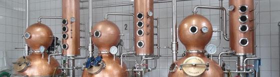 Für die Whisky Destillation werden nur die Brennkessel der Anlage von Carl verwendet