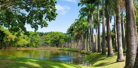Habitation Clément auf Martinique - Foto Rhum Clement