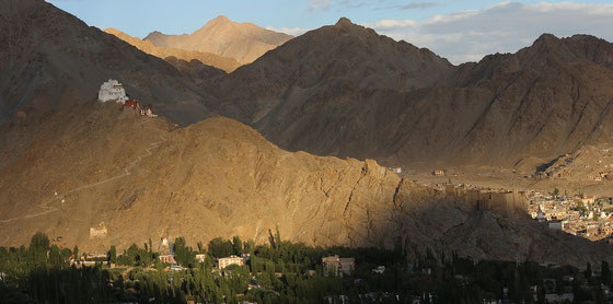 Kaschmir ist das bedeutendste Anbaugebiet für Nüsse