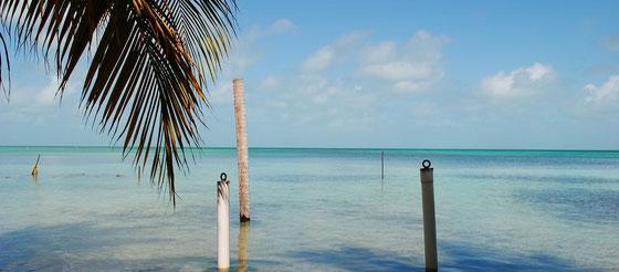 Belize - Rum aus Mittelamerika