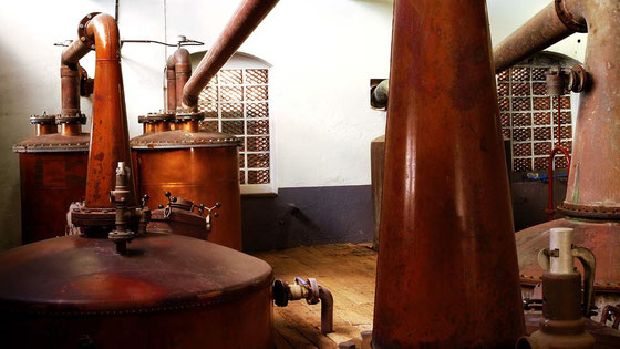 Mount Gay Pot Stills - Foto Rèmy Cointreau
