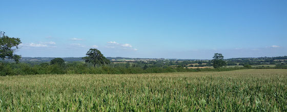 Haute Bretagne in der Nähe von Rennes