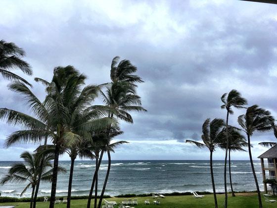 kauai-hotel