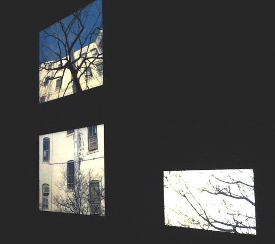 ワタリウムにて photo by tamamiazuma