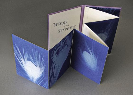 Verschiedene Pfauenaugen Federn auf blauem Papier