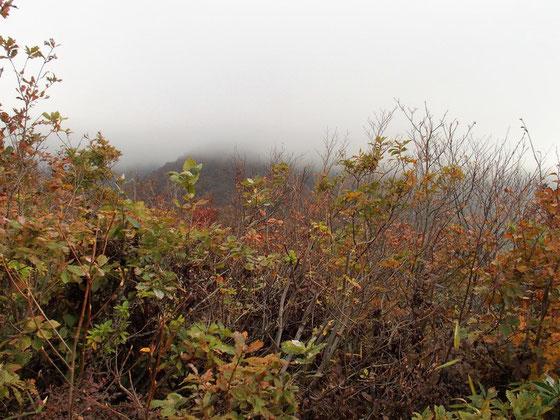 冠岳から浄法寺山を望む。風もあって寒く先が思いやられる。