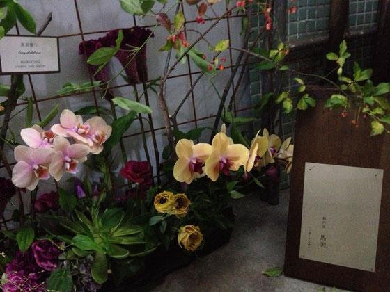 ムクロジで贈らせて頂いたお花が入り口に!
