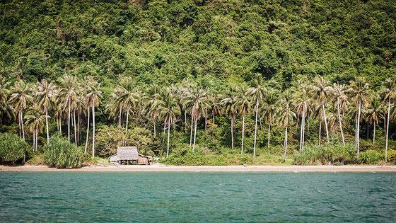 Playas prácticamente virgenes bordean la isla.