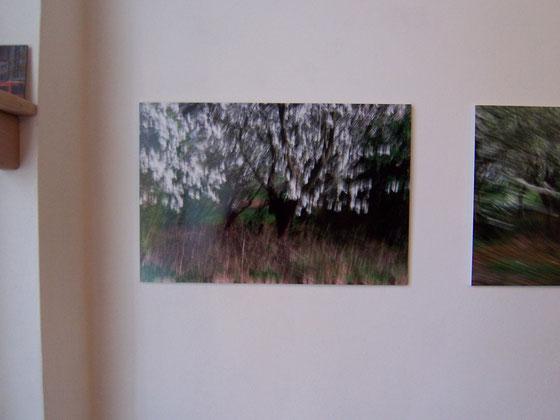 Firouzeh Görgen-Ossouli in der Galerie SEHR, Februar 2014