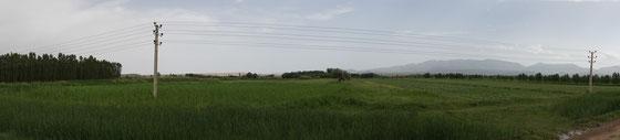 Es folgen auch grüne Abschnitte - die Landschaft ist sehr abwechslungsreich - immer begrenzt von Hügelzügen oder Bergen...