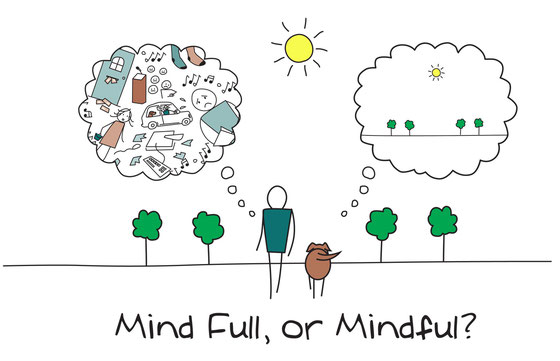 Mindfulness cursus Amsterdam West, Oost, Noord, IJburg en Amstelveen