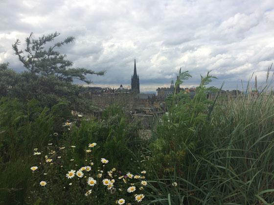 Toller Ausblick vom Dach des Museums