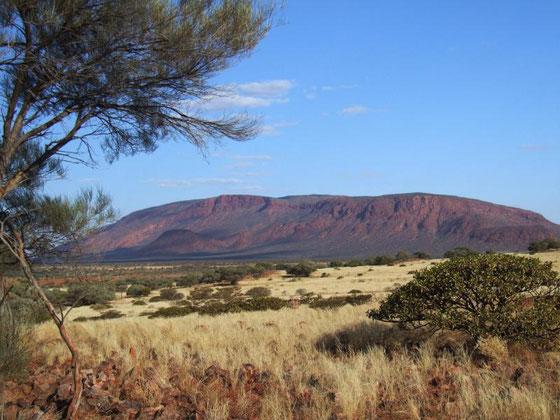 Mount Augustus (Albert and Patricia Chandler) parks.dpaw.wa.gov.au/park/mount-augustus