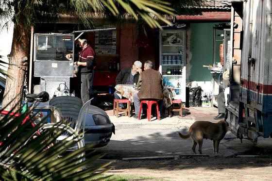 Istambul,Janvier 2008,thé sur les rives du Bosphore