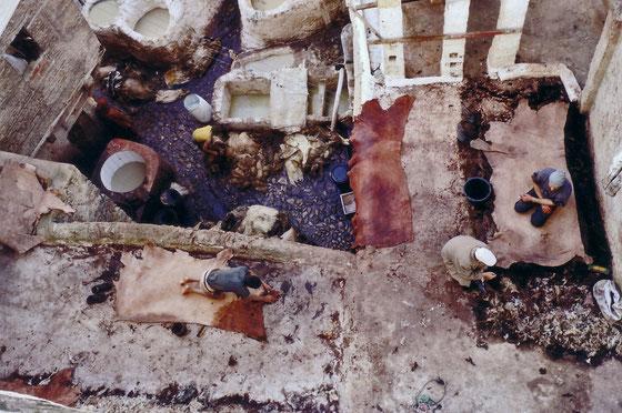 Les tanneurs de Fes,Novembre 2008