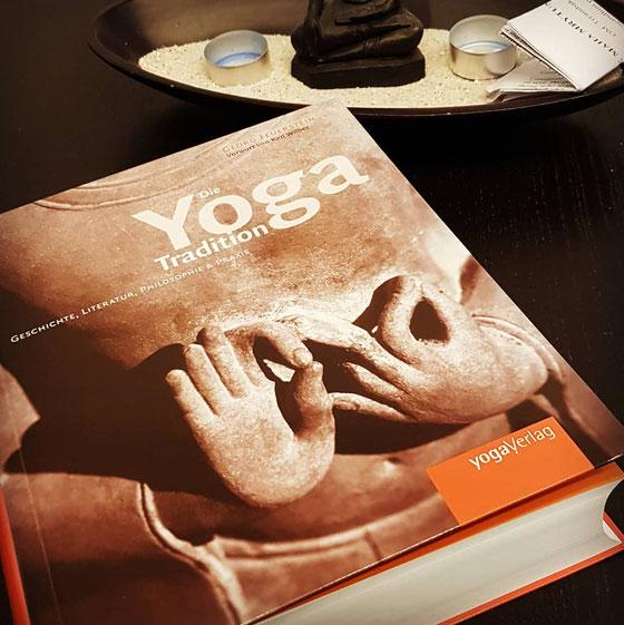 Yoga Immersion. Eintauchen in den Yoga. Tigress Yoga, die Symbiose von Power Vinyasa Yoga und Kung Fu. In Zürich Oerlikon.