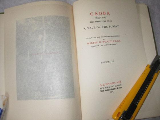 CAOBA=オオバマホガニーのスペイン語