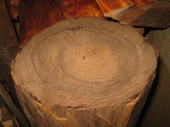 インドローズの原木(枝!)