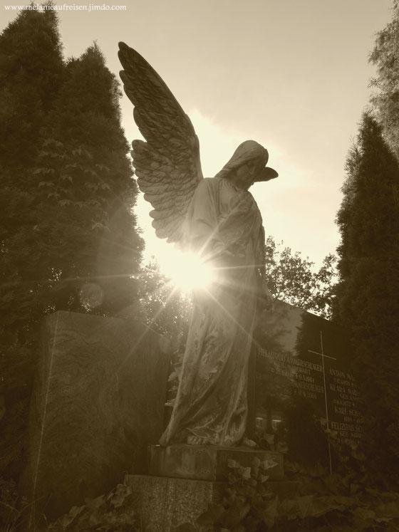 Altstadtfriedhof Aschaffenburg MelanieaufReisen Fotoparade