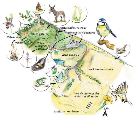 Occitanis, graulhet, biodiversité